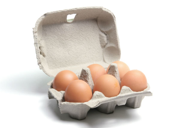 On numerology and public transit future economics for How to recycle egg cartons