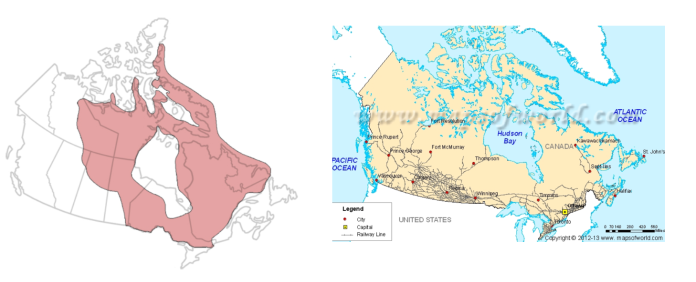 Canadian Shield .png